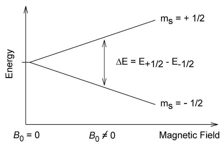 New Area of Magnetic Physics