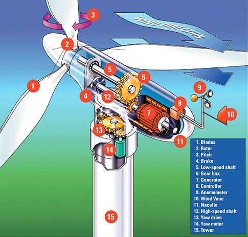 5 Facts About Wind Turbines